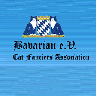 Bavarian e.V.® Cat Fanciers Association